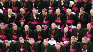 synod bishops